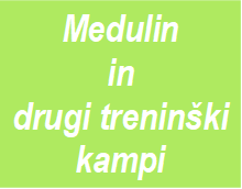 Medulin in dtp